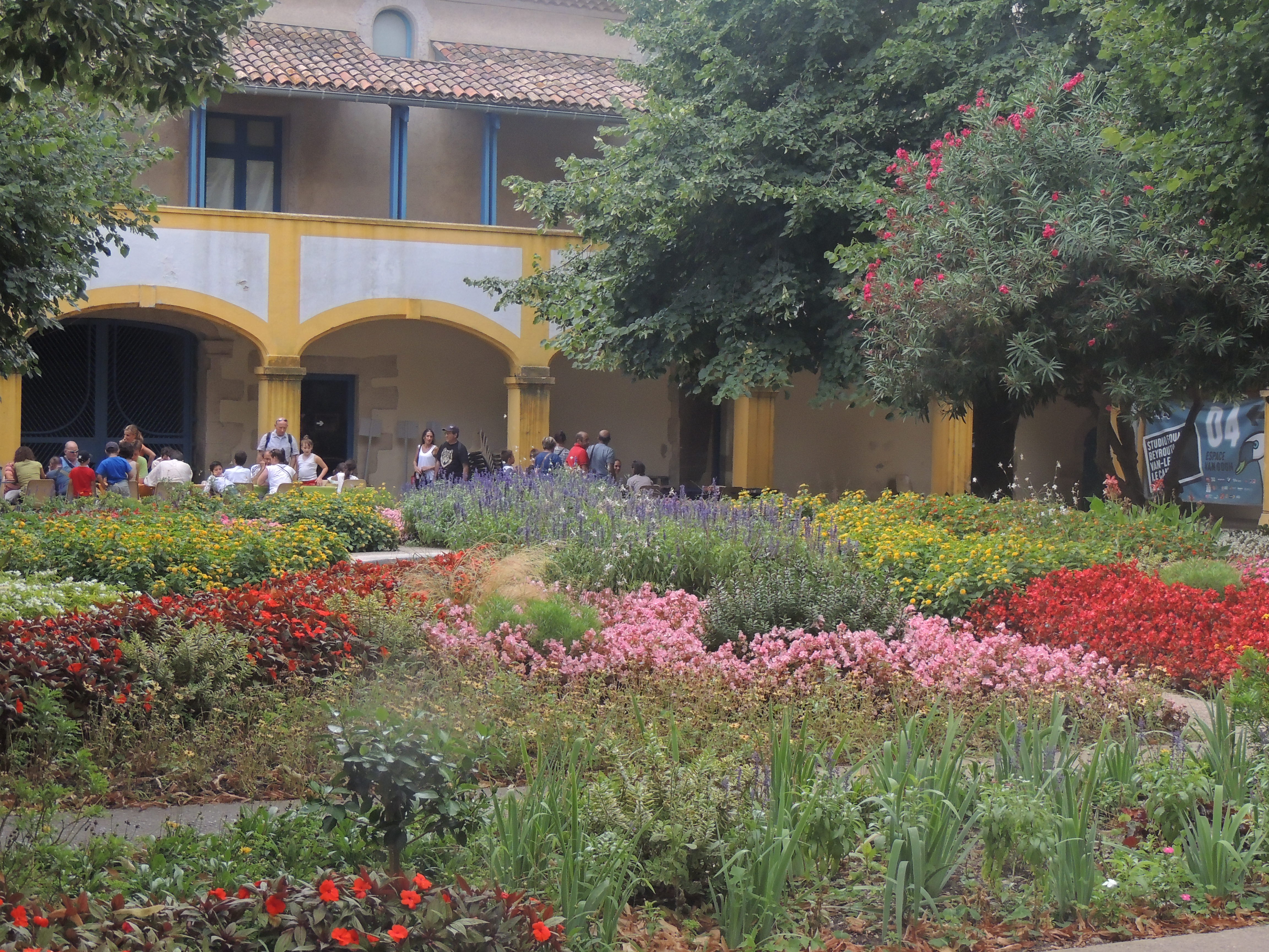 Courtyard garden of the Hospital in Arles
