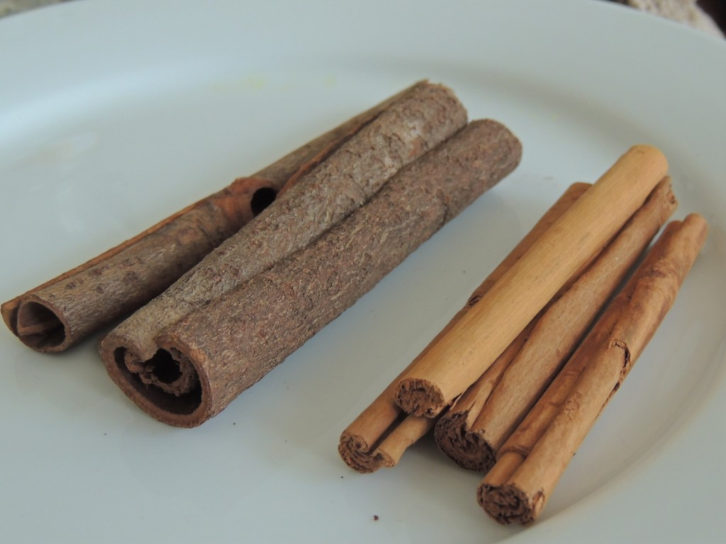 Cassia bark (left) and True Cinnamon
